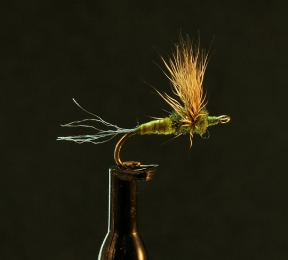 Scaled 250-2-5-Wt AVG-1604-05 BWO Biot
