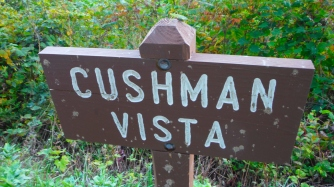 Splattered Cushman View's Sign